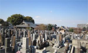 墓地さがし