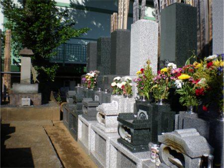 観音寺【日当たりの良い墓地】