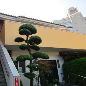 長耀寺の本堂