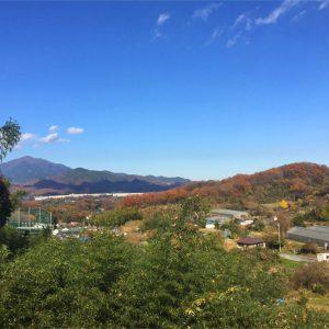 メモリアル富士見霊園 風景