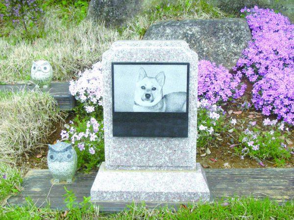 メモリアル富士見霊園 ペット墓碑