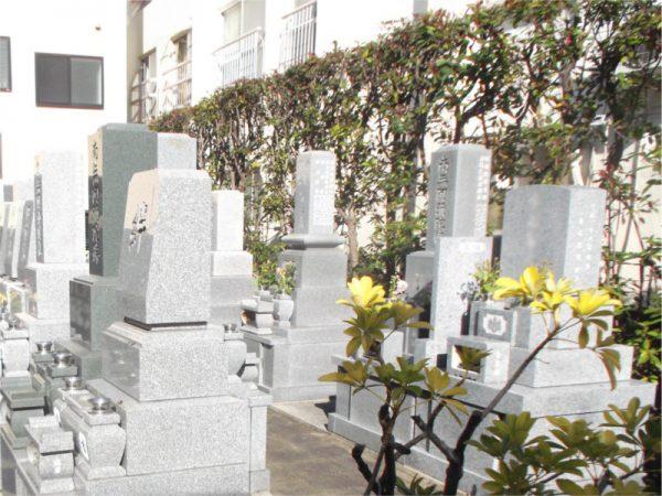 長嚴寺 墓地